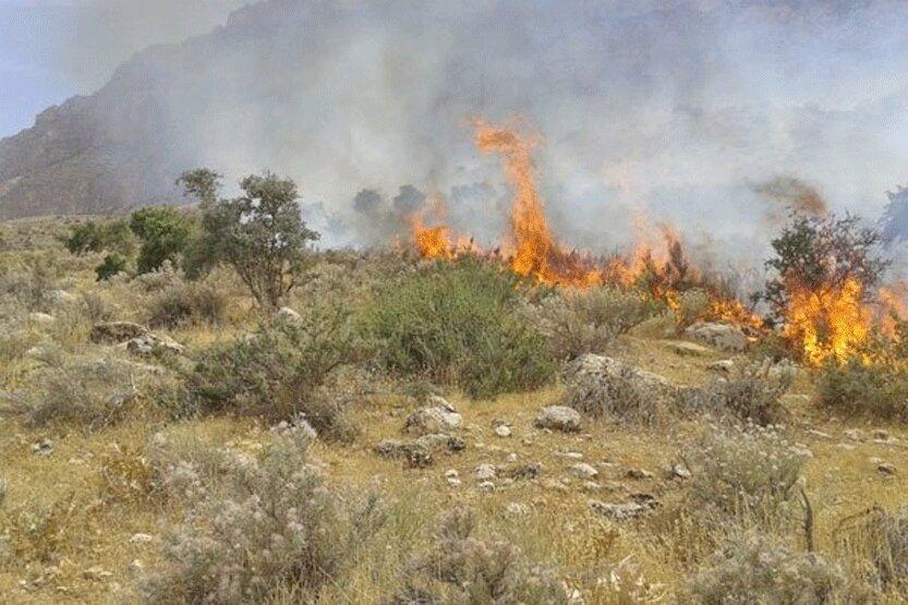 45 هکتار مراتع و جنگل های استان سمنان در آتش سوخت