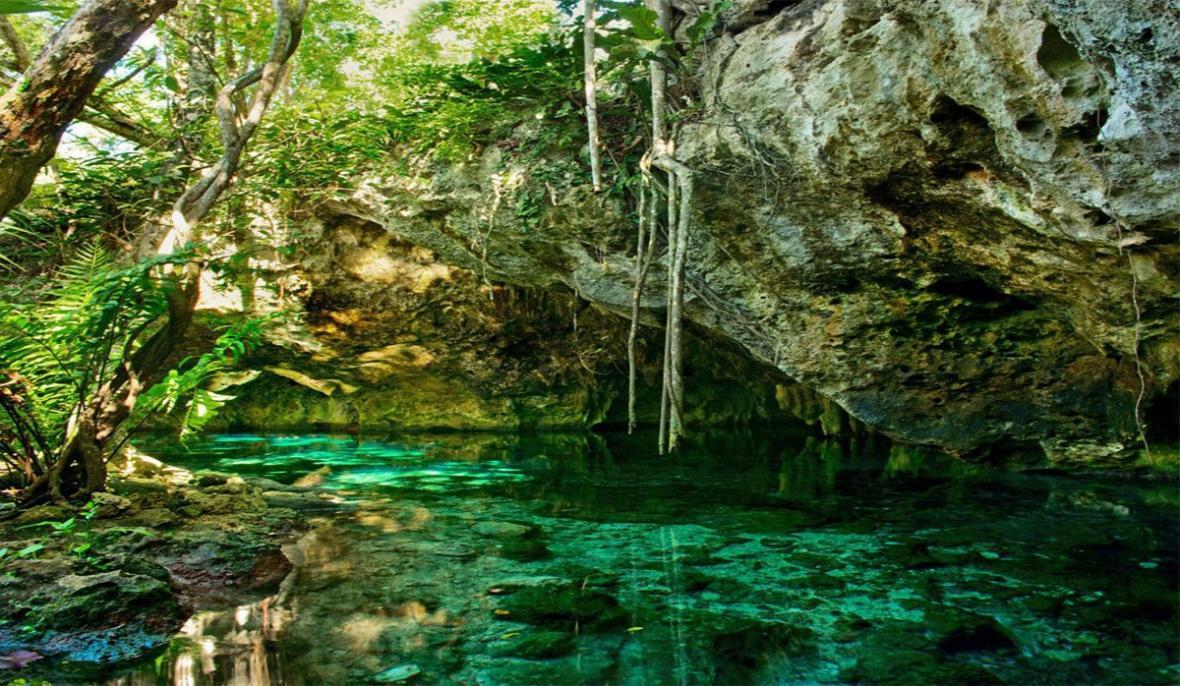 ثبت جنگل های هیرکانی در میراث جهانی یونسکو