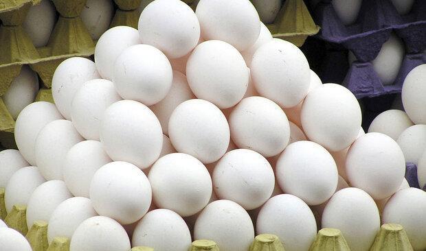 توزیع مرغ 15750 تومانی و تخم مرغ 13900 تومانی در میادین شهرداری