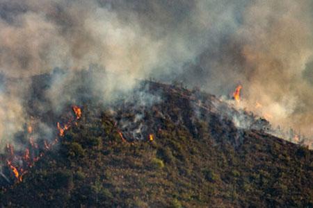 روشن کردن آتش در جنگل جرم است ، تخلفات در جنگل ها و مراتع را به 139 و 1504 گزارش دهید