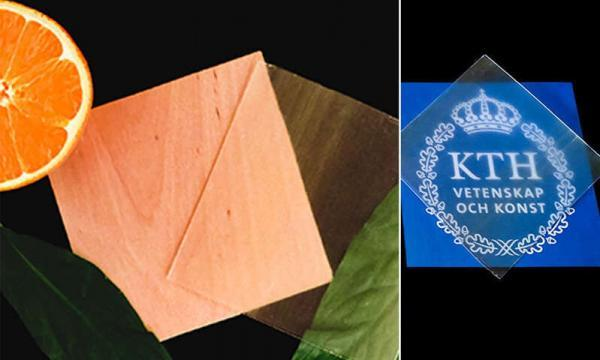 خبرنگاران تولید چوب شفاف از پوست پرتقال
